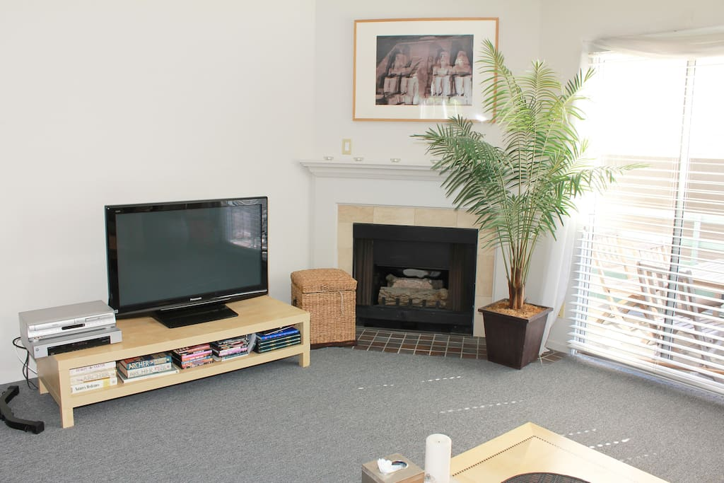 Flat screen TV, full cable....the fireplace actually works!