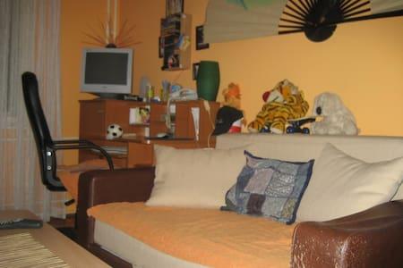 smaller room  - Zrenjanin