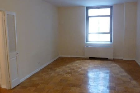 1 bed room apt in NYC near Empire State Building - New York - Wohnung