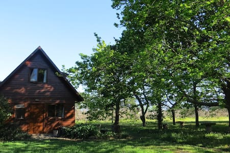 Windermere Orchard Cottage - Cape Town - Cabin