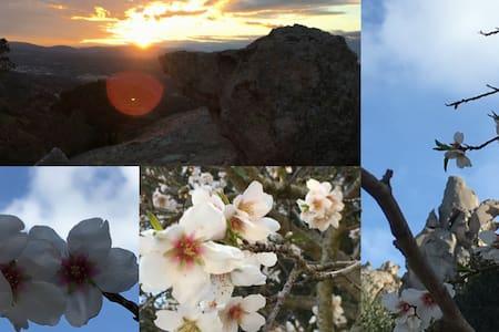 Nuovissima Struttura in armonia con la natura - Arzachena - Bed & Breakfast