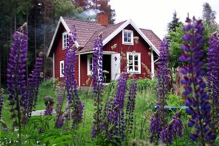 Klassisk svensk hus fra 1830. - Tävelsås - Zomerhuis/Cottage
