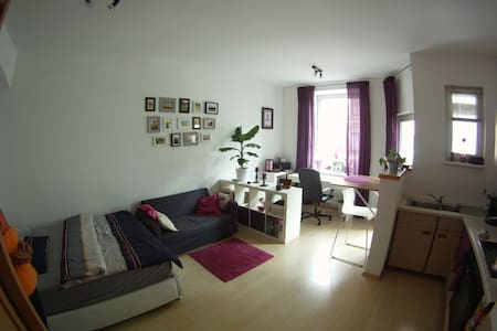 Garconniere / single-room-apartment