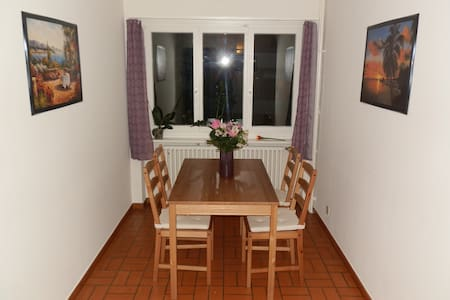 Lovely flat close to city center - Zürich - Apartment