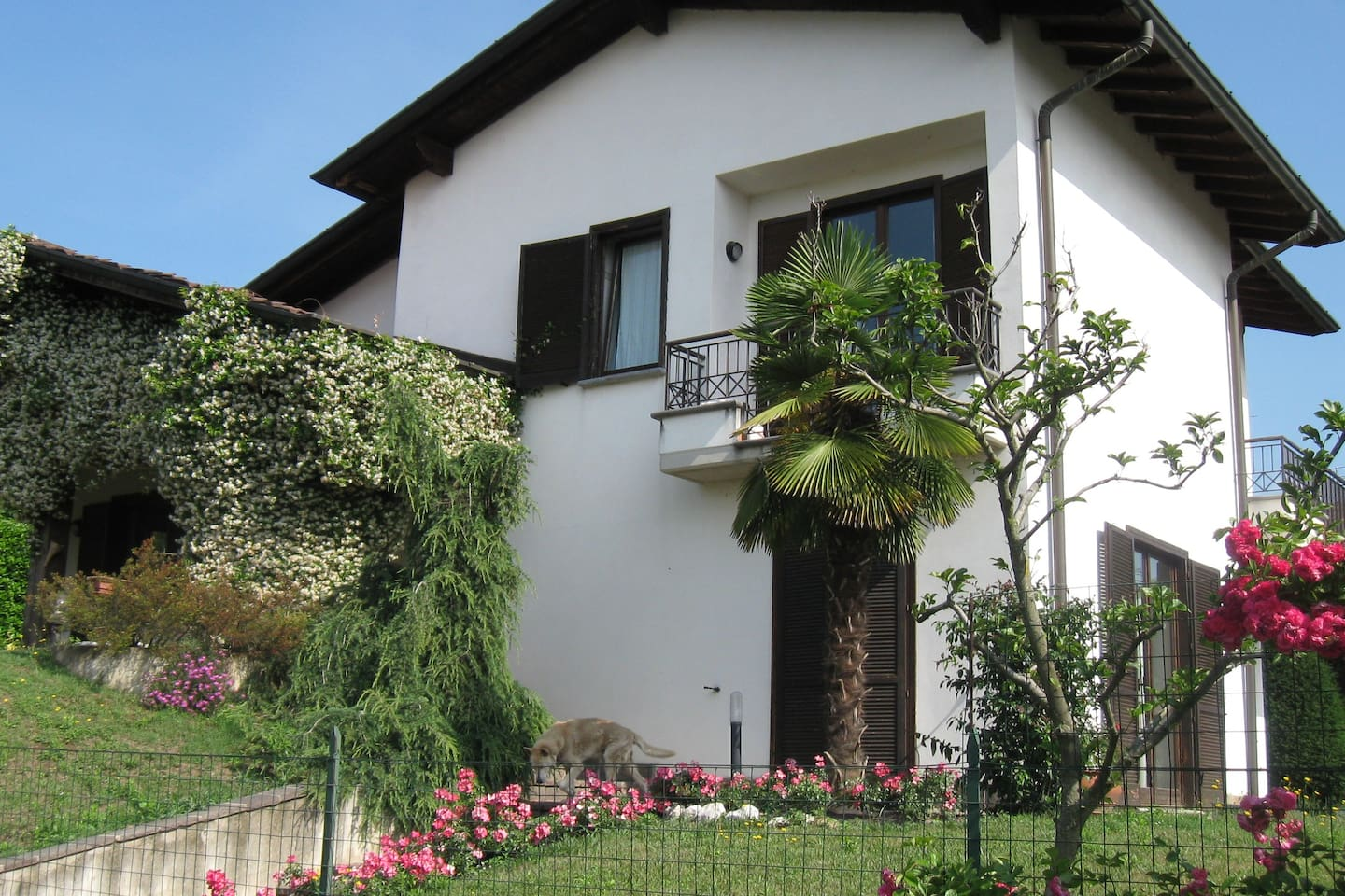 Rent a room at the Villa Patrizia!