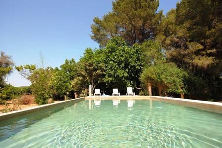 Precioso loft con piscina - Ibiza - Loft