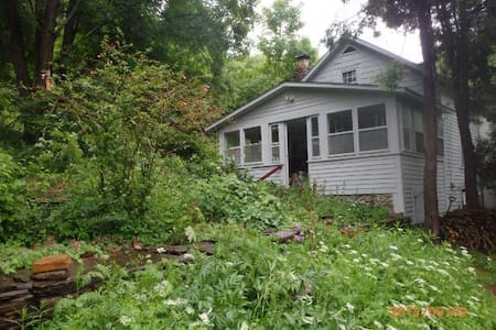Wellstone Cottage - Cooperstown - Casa