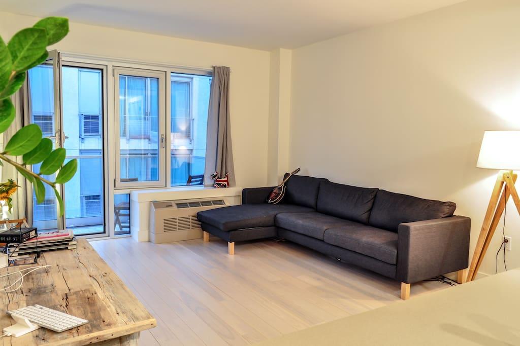 Beautiful light apartment in Dumbo