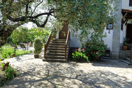 Spacious apartment in old olive grove - Apartament