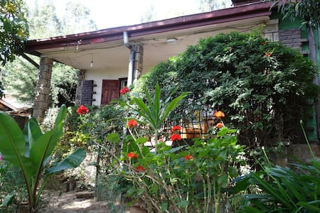 Enchanted house in a magical garden - Addis Ababa - 一軒家