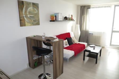 Nice studio apartment in the centre of Ostrava - Ostrava - Apartment