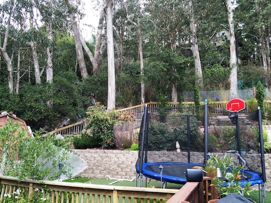 Total privacy. Large trampoline with bball hoop