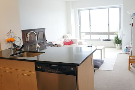 Sunny 1br apartment with ocean view