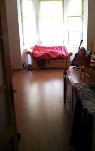 Big sunny room at Zizkov area