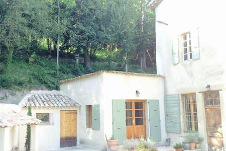 Ambiance Maison de Maitre et Parc - Crest - Apartament