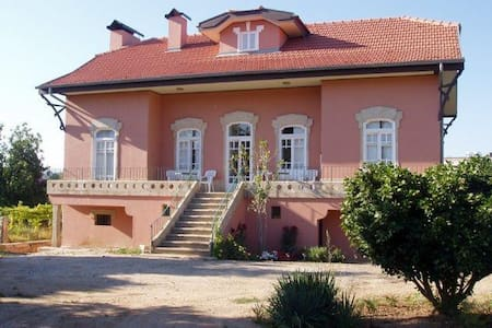 Characterful House Great Location - Monção - House
