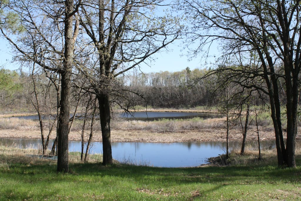 Spring view of small private lake/wetland from cabin