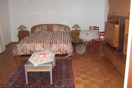 Stadtnahe Einzimmerwohnung mit Garten - Heidenheim an der Brenz - Apartament