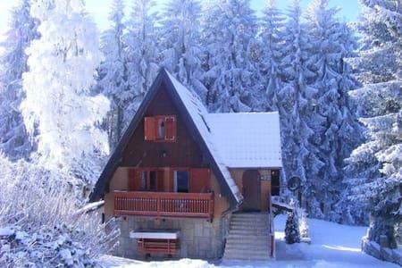 Dobra Villa Dushica - Hytte