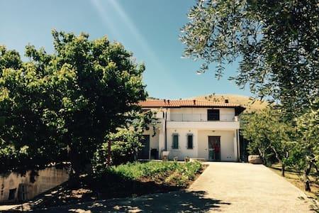 Tra ulivi e mare nel Gargano #3 - Cagnano Varano - Apartmen