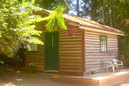 Newly renovated rustic log cabin - Kisház