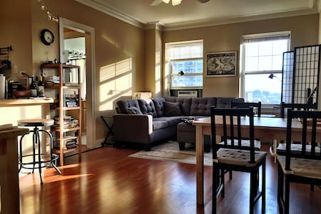 Charming & Historic Lincoln Park 1 Bedroom - Chicago - Apartment