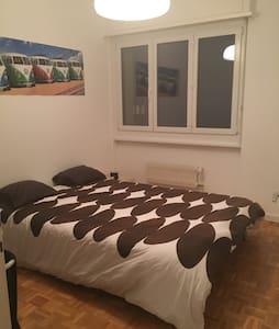 Central & Calm room in Geneva - Onex - Appartement