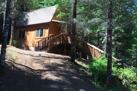 Lone Wolf Cabin - Blockhütte