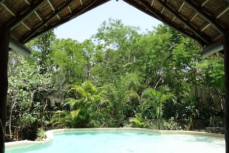 Room Azul in a Jungle B&B with pool