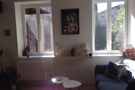 Appartement Cosy Vienne centre au Calme (Rawfood) - Vienne - Daire