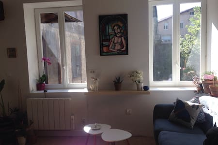 Appartement Cosy Vienne centre au Calme (Rawfood) - Wohnung