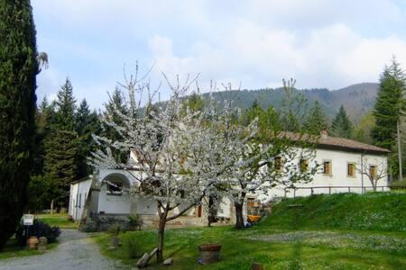 Convento del Carmine - Fivizzano - Villa