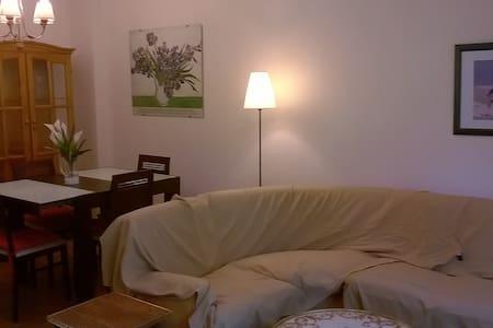 Bonito piso en zaragoza con vistas al jardin - Piano intero