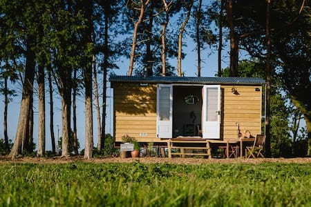 Godwick Shepherds Hut -Norfolk Horn - Kings Lynn - Barraca