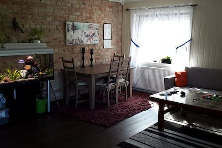 Quite newly renovated apartment - Apartment