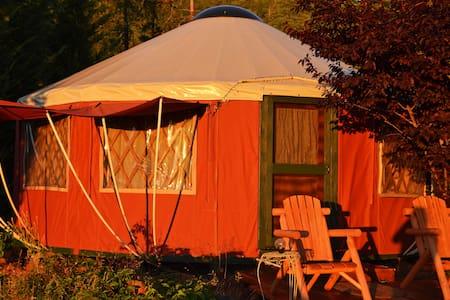 Sunset View Yurt in Applegate Valley Wine Country - Rundzelt