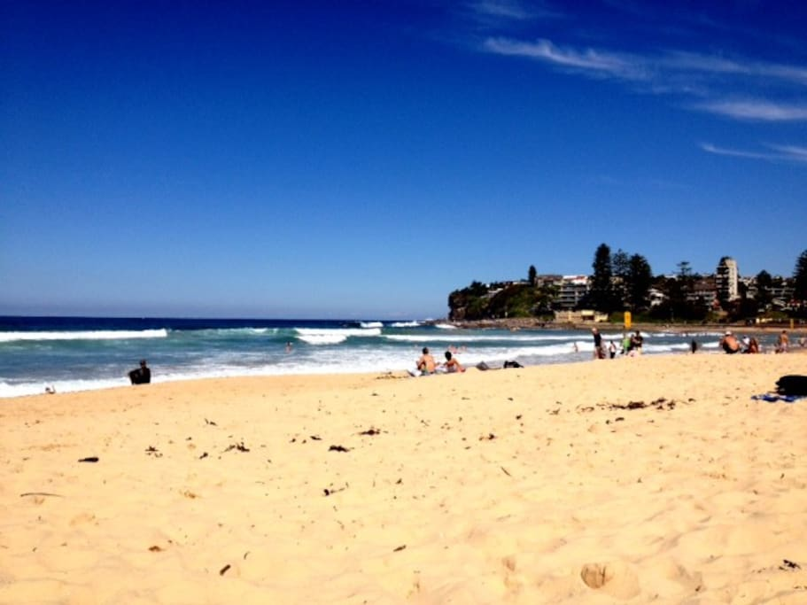 Beautiful Dee Why beach only minutes walk from the apartment