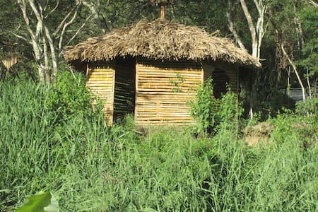 Grass Hut for Travelers/Camping - Vilcabamba - Skjul