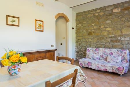 CASCINA DEGLI ALBERI-LA MARMOTTA - Lisciano Niccone - Apartment