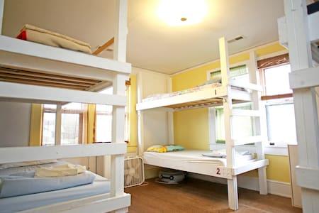 Mixed Dorm Bunk at BPS Hostel