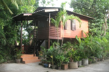 teak house in the palms