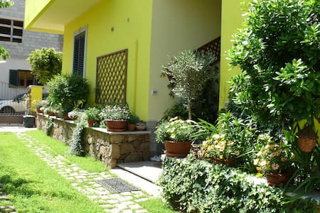 Lovely flat in Northern Sardinia C - Lejlighed
