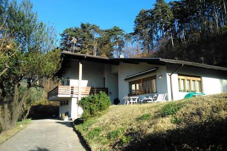 B&B nella natura vicino Trento - Apartment
