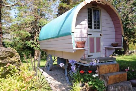 Chez Shea Gypsy Wagon- - Lain-lain