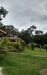 Tamarindo Charming Cozy Cabin #2 -  7+ people - Tamarindo - Cabane