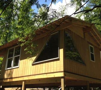 Cabin Creek Hide-Away (Letchworth) - Cabin