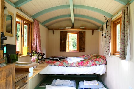 Sumptuous Shepherd's Hut at Hayne, Devon - Crediton - Skjul