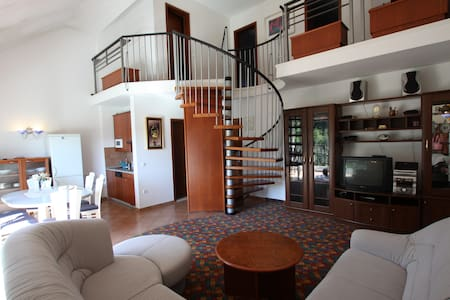 Spacious duplex apartment in Olimje - Apartamento