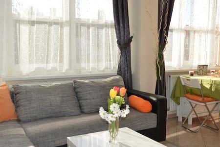 Gemütliche Apartment mit Balkon - Lakás