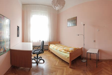 Spacious rooms in the best location - Ljubljana - Apartment